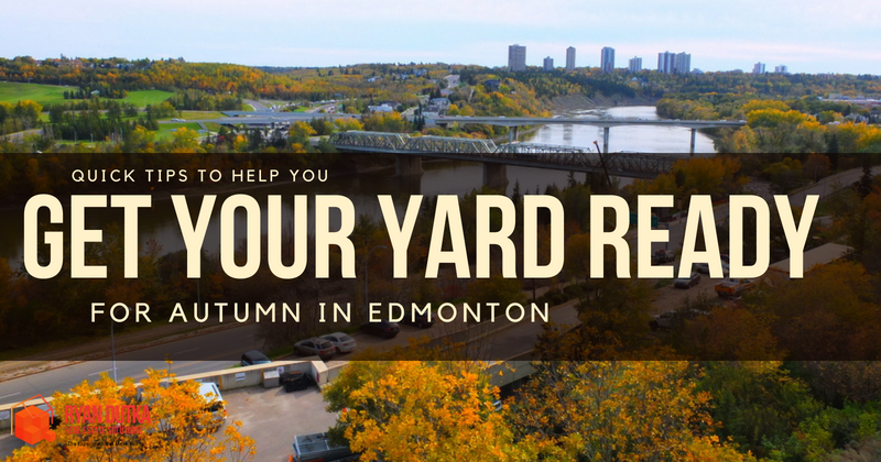 Get Your Yard Ready for Autumn in Edmonton