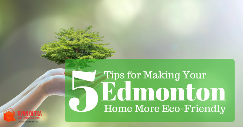 5 Tips For Making Your Edmonton Home More Eco-Friendly